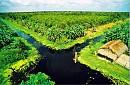 Chương trình Hòn Đá Bạc – Nhà Bác Ba Phi – Rừng Quốc Gia U Minh Hạ