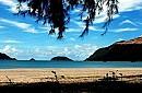Con Dao Sea Travel Resort