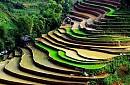 Hà Nội – Hạ Long – Tuần Châu – Chùa Bút Tháp – Bát Tràng - Sapa
