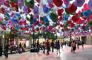 Hà Nội - HongKong - Disney Land 4 Ngày 3 Đêm