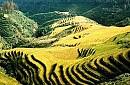 Hà Nội – Ninh Bình (Bái Đính, Tam Cốc) – Hạ Long – Yên Tử - Sa Pa