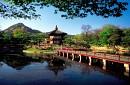 Hà Nội - Seoul - Nami - Everland