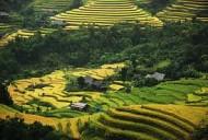 Ngòi Tu - vẻ đẹp từ bản sắc văn hóa dân tộc
