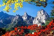 Du Lịch Hàn Quốc: Hà Nội - Seoul - Nami - Everland