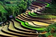 Du Lịch Miền Bắc: Hà Nội – Hạ Long – Tuần Châu – Chùa Bút Tháp – Bát Tràng - Sapa