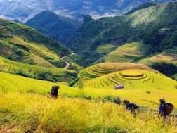 Du lịch Mũi Né: TP Hồ Chí Minh - Phan Thiết – Mũi Né – Hòn Rơm
