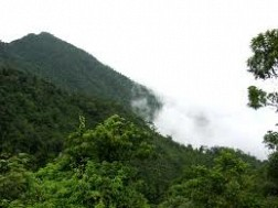 Chinh Phục Đỉnh Núi Tam Đảo