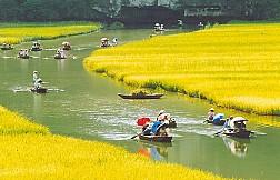 Tour Hà Nội - Ninh Bình - Hoa Lư - Tam Cốc - 1 Ngày