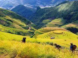 TP Hồ Chí Minh - Phan Thiết – Mũi Né – Hòn Rơm