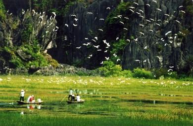 Tràng An Ninh Bình 2 Ngày 1 Đêm: Hà Nội - Bái Đính - Tràng An - Hoa Lư