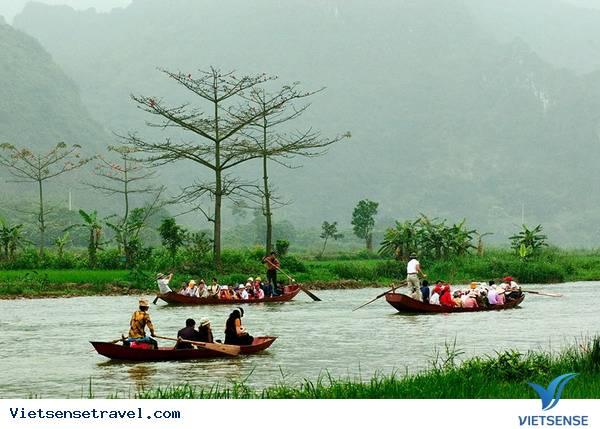 Cảnh Suối Rừng Chùa Hương