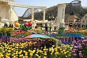 Hà Nội Seoul Công Viên Everland Đảo Nami