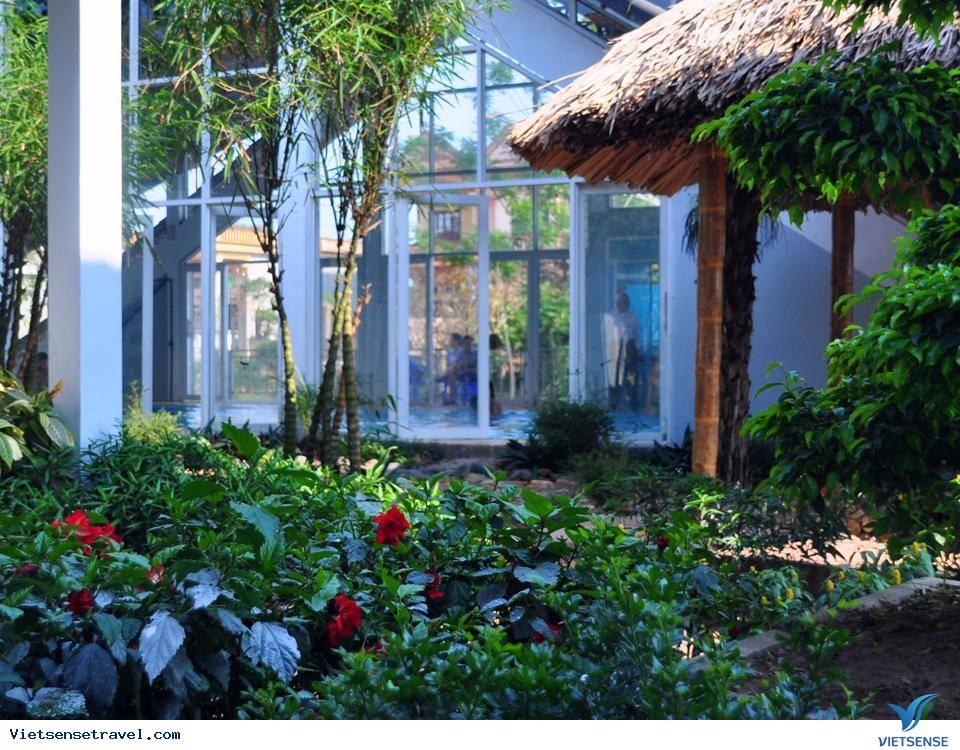 Du Lịch Miền Bắc: Ha Noi - Tre Nguon Resort, Hà Nội – Tre Nguồn Resort 2 Ngày 1 Đêm