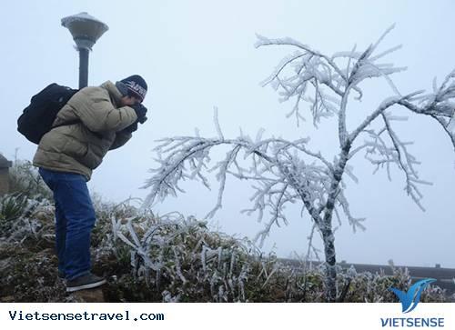 Kỳ thú ngắm băng tuyết Sapa những ngày đầu năm 2013,ky thu ngam bang tuyet sapa nhung ngay dau nam 2013